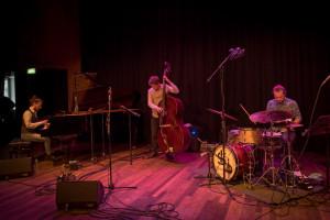 Rok Zalokar trio de Doelen 2